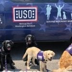 Dogs w/USO van at Fort Belvoir