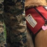 Canine Assisted Warrior Therapy Sandra Brooner