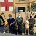 PPH Dogs with Soldiers and nurse