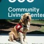 Webb community living center VA military facility dog