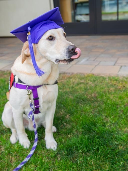PPH Ralph at graduation