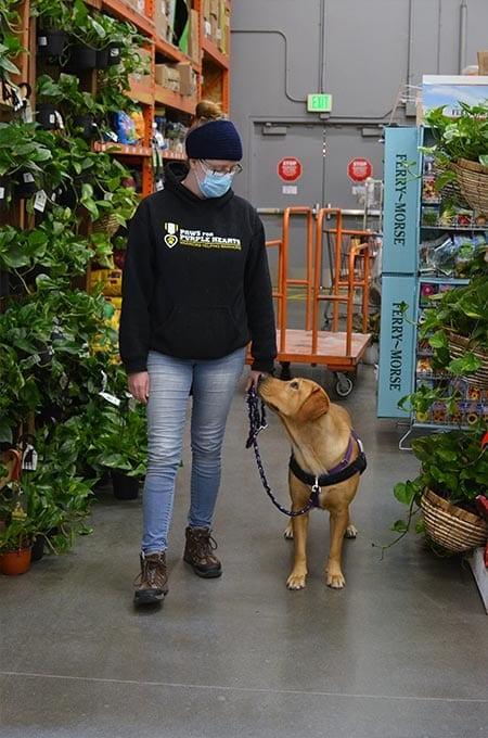 Liberty keeps her focus on her handler