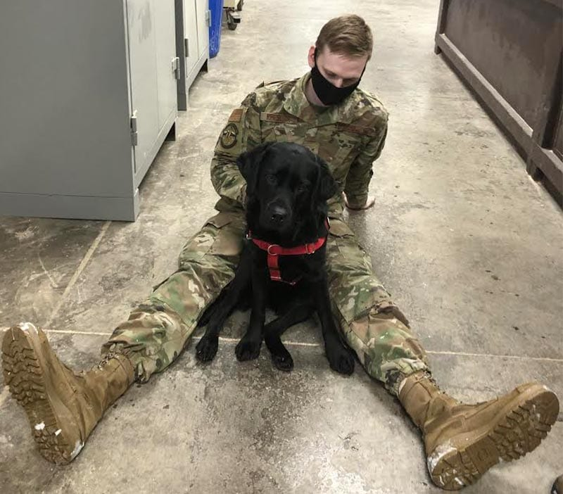 Therapy Dog Elma and a member of the 773rd Civil Engineer Squadron at the Joint Base Elmendorf-Richardson in Anchorage, Alaska.