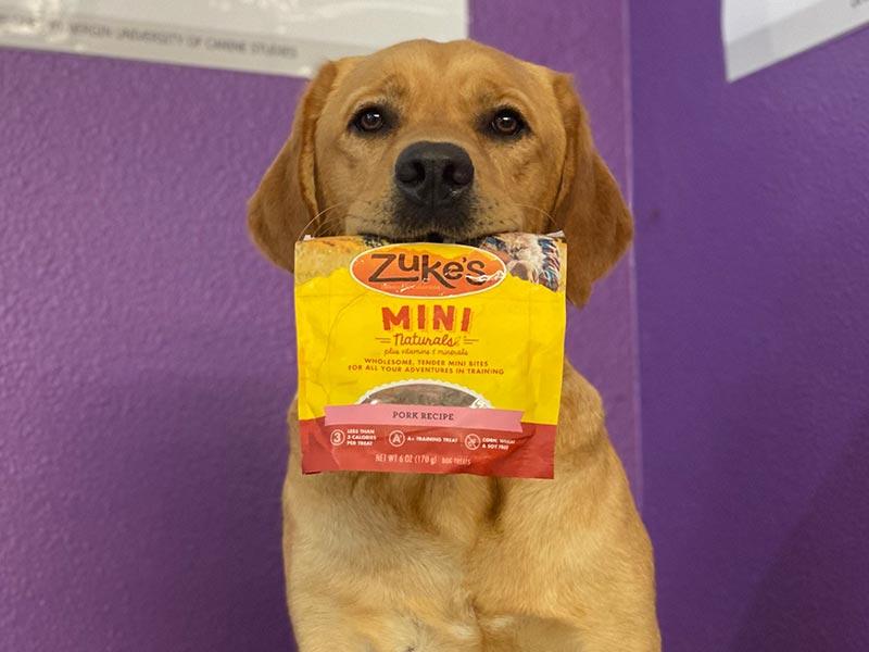 Zuke's are one of #pphArri's favorite treats!