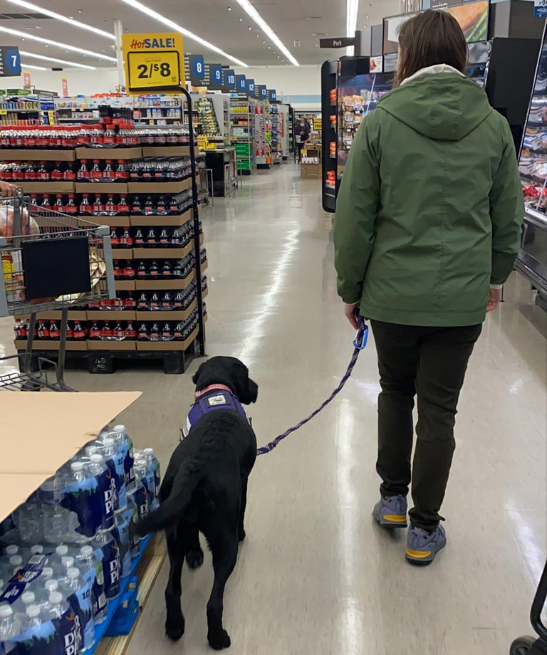 Field trip to grocery stores are a great way to practice socialization.